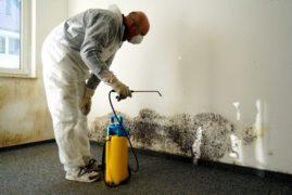 Проблема влажности стен зданий+
