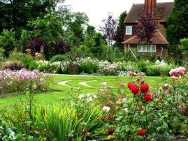 Изысканный розарий в вашем саду