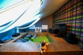 Вдохновляющие идеи организации зоны отдыха в небольшой квартире
